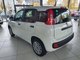 Fiat Panda bei Gebrauchtwagen.expert - Abbildung (3 / 13)