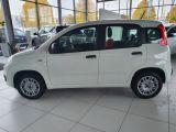 Fiat Panda bei Gebrauchtwagen.expert - Abbildung (2 / 13)