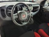Fiat Panda bei Gebrauchtwagen.expert - Abbildung (12 / 13)