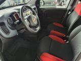 Fiat Panda bei Gebrauchtwagen.expert - Abbildung (9 / 13)