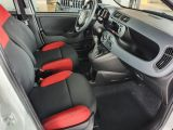 Fiat Panda bei Gebrauchtwagen.expert - Abbildung (11 / 13)